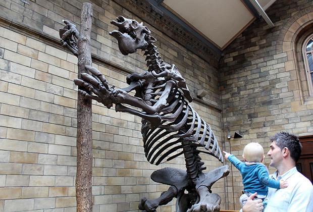 El chupete de Mark en el museo nacional de historia de londres